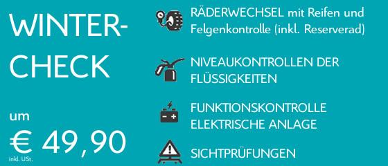 Wintercheck-Radwechsel-Pongruber-Elixhausen